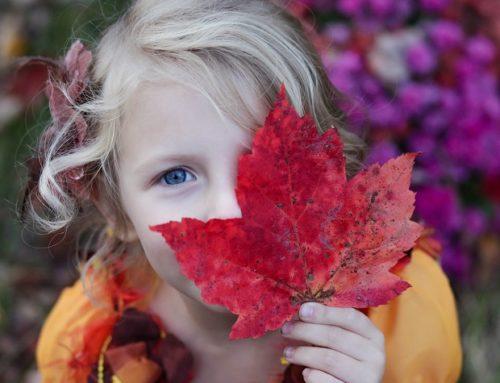 Visuelle Wahrnehmungsstörungen bei Kindern erkennen